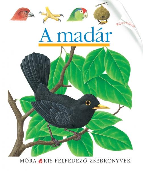 A madár