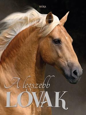 A legszebb lovak