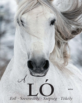 A ló - Erő  • Szenvedély • Szépség • Tökély