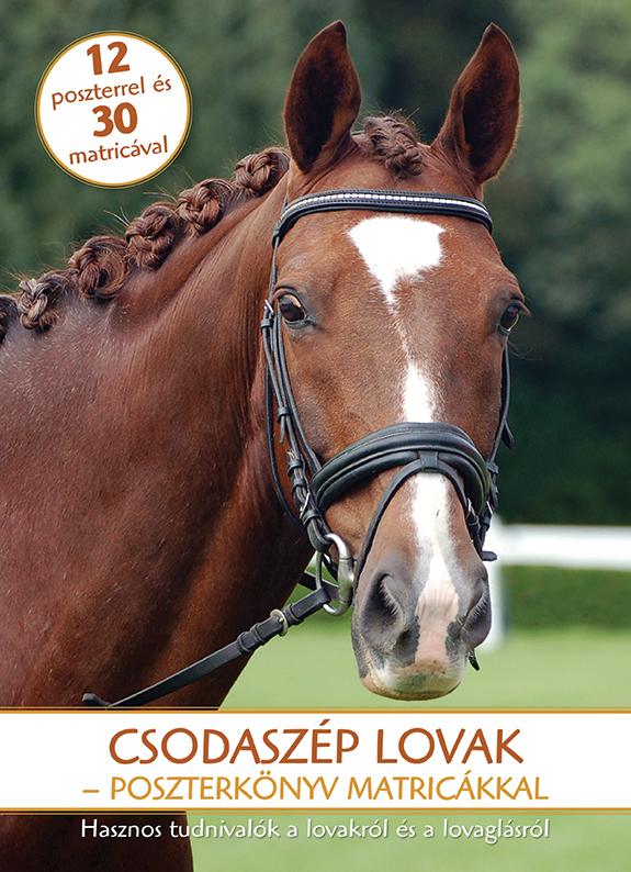 Csodaszép lovak - Poszterkönyv matricákkal