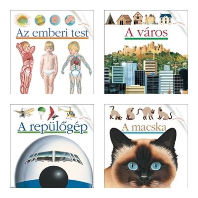 kfzs-emberi test-varos-repulogep-macska